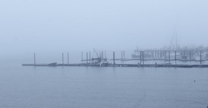 fog on the dock